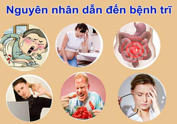 nguyên nhân gây ra bệnh trĩ cấp độ 4