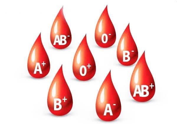 nhóm máu o có hiếm không